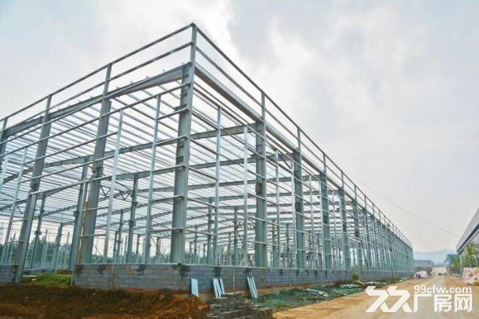 政府扶持独门独栋配套齐全全新钢结构现房厂房对外出租-图(1)