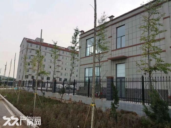 政府扶持独门独栋配套齐全全新钢结构现房厂房对外出租-图(2)