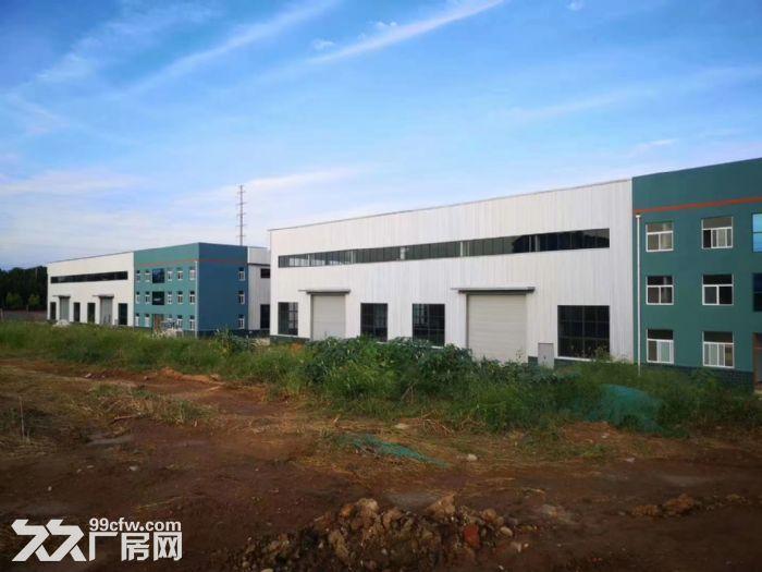 政府扶持独门独栋配套齐全全新钢结构现房厂房对外出租-图(3)