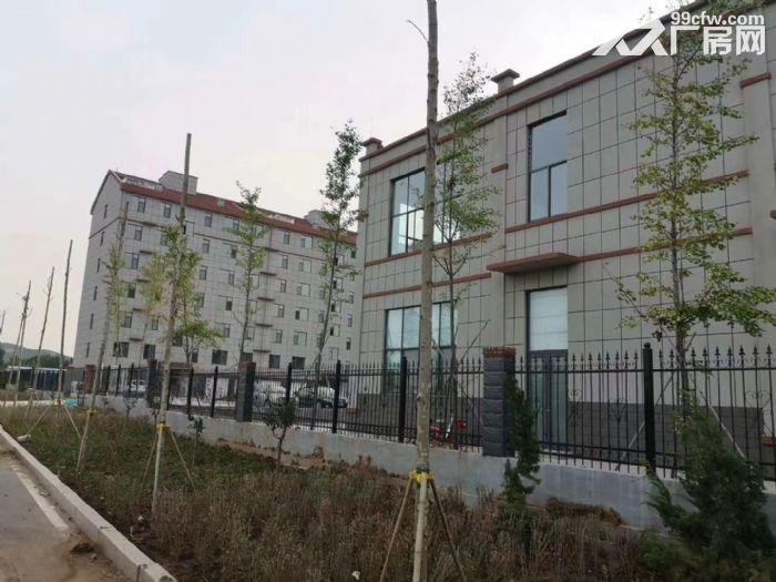 全新钢结构现房厂房对外出租环评安评等一切手续包办配套齐全环境优美-图(3)