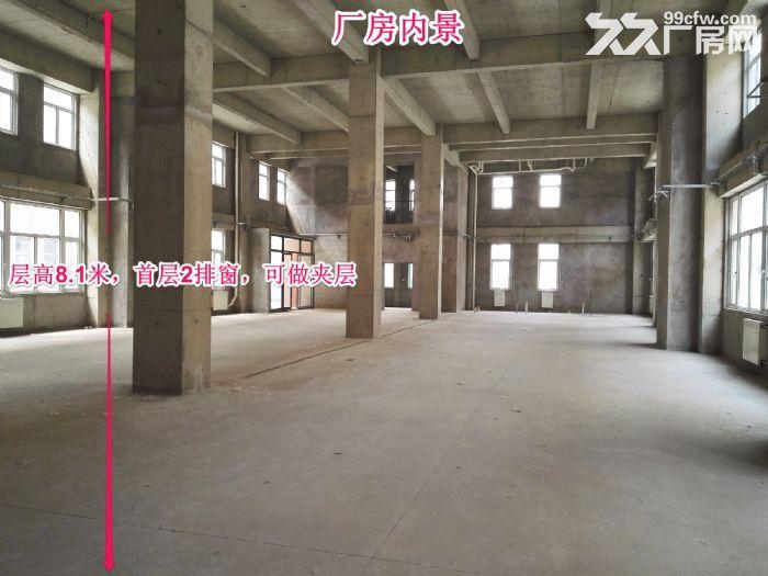 【售大产权厂房】层高8.1米,滨海高新区欢迎您,享政策,可贷款,能环评!-图(1)