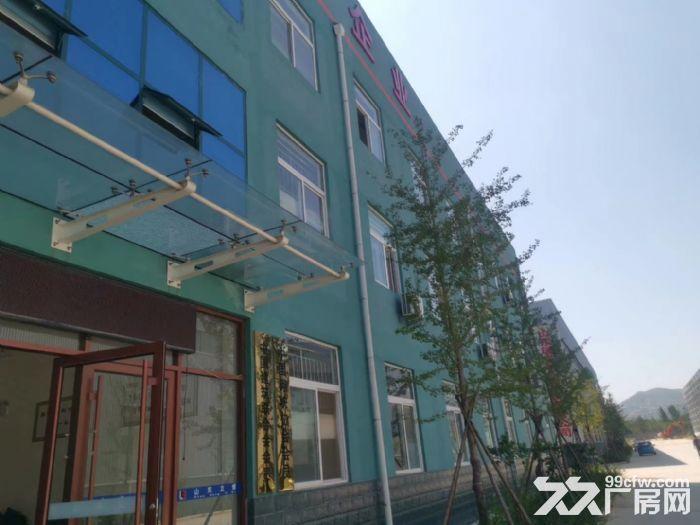 全新钢结构现房厂房对外出租配套齐全全市电费最低环评安评等一切手续包办-图(4)