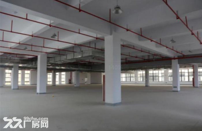 湖州东新智造产业园标准厂房招商-图(6)