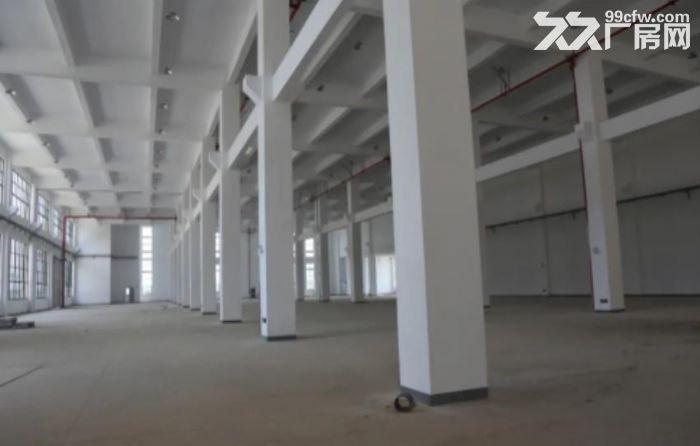 湖州东新智造产业园标准厂房招商-图(7)