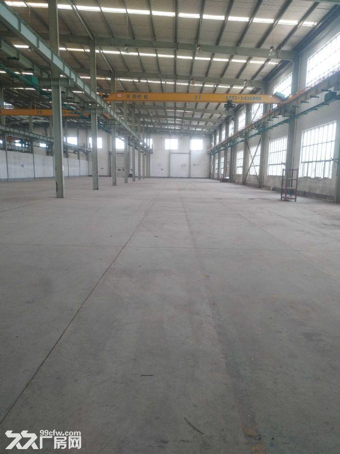 汽车南站雨花环保工业园标准钢结构厂房带5吨龙门吊急租-图(3)