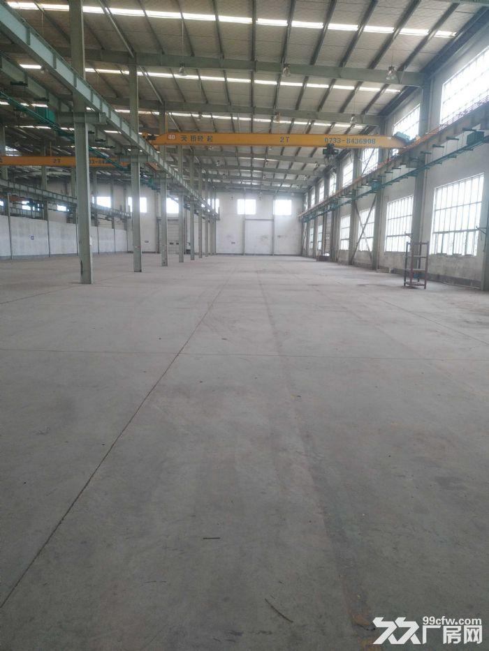 城南雨花环保工业园标准钢结构带行车厂房急租可做加工-图(2)