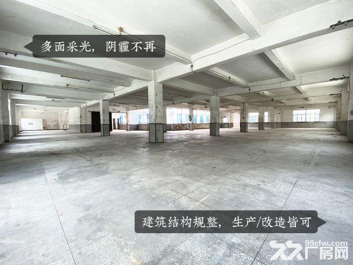 泉州清源山脚独门独院7500平厂房诚意招租-图(3)