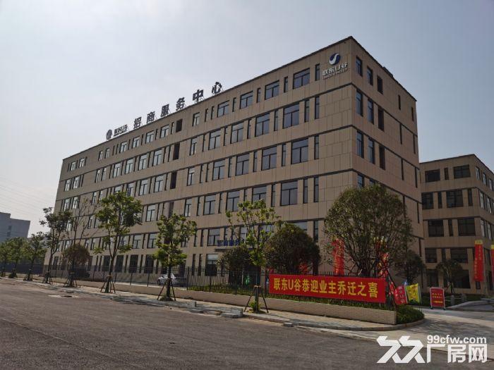 麓谷国际工业园内400−1000平方一楼及楼上房东出租-图(1)