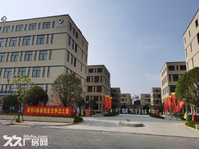 麓谷国际工业园内400−1000平方一楼及楼上房东出租-图(2)