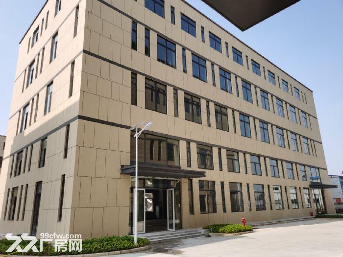 麓谷国际工业园内400−1000平方一楼及楼上房东出租-图(3)
