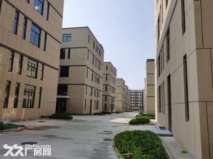 麓谷国际工业园内400−1000平方一楼及楼上房东出租-图(4)