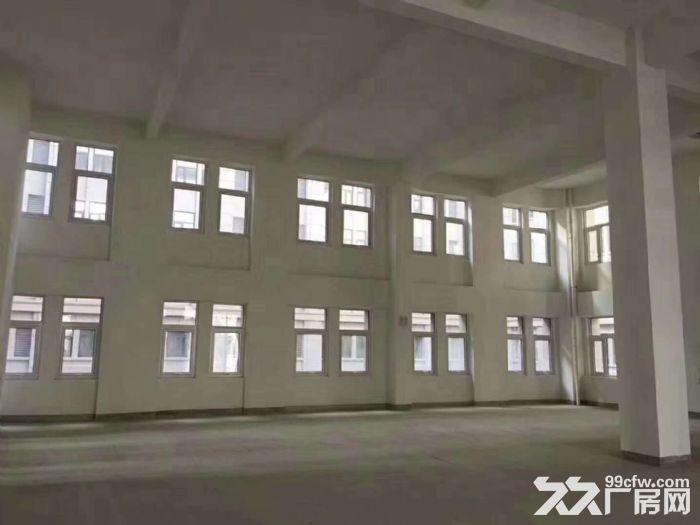600平起售独立房本50年产权全新仓库厂房水电手续齐全可按揭-图(7)