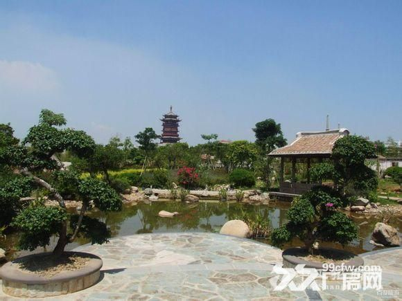 深圳市园博园 图2
