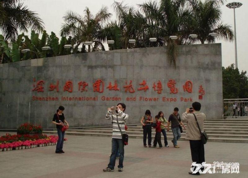 深圳市 园博园  图3