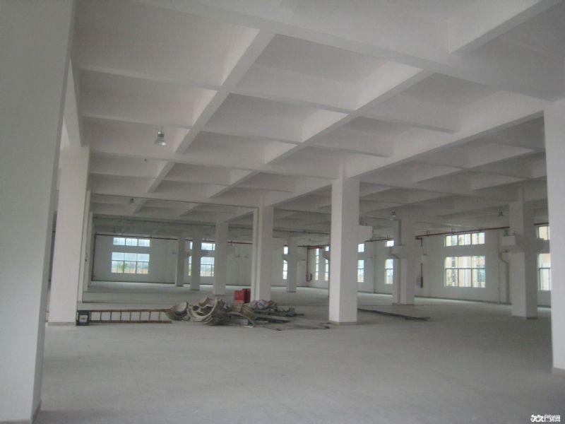 珠海市联港工业区 图3