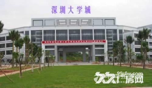 紧邻深圳野生动物园,距离深圳市高新技术产业园区约10公里,总体规划建