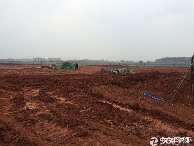 广州(清远)产业转移工业园 图1