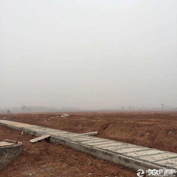 广州(清远)产业转移工业园 图3