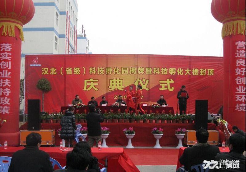 湖北省襄阳市汉北工业园 图4