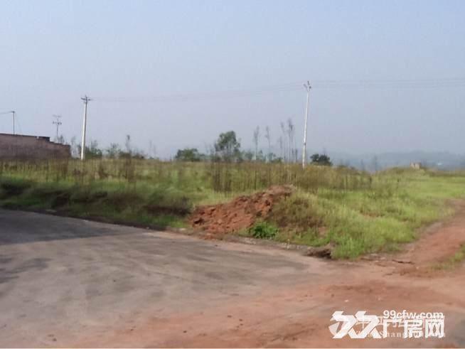 合江临港工业园 图2
