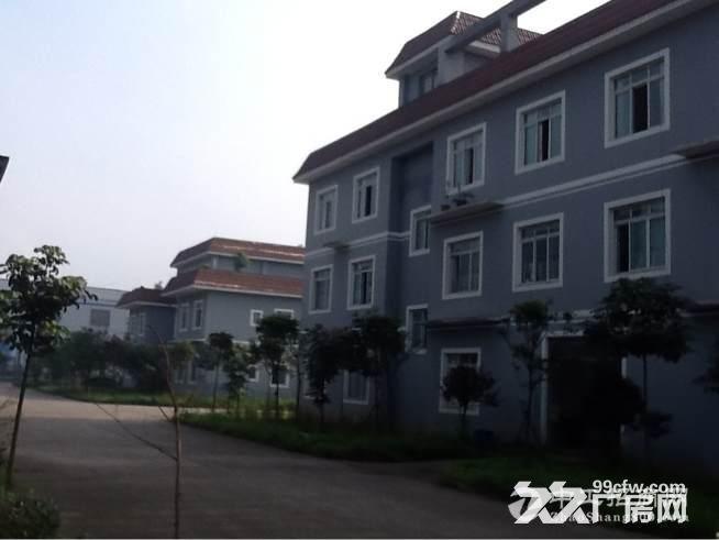 合江临港工业园 图4